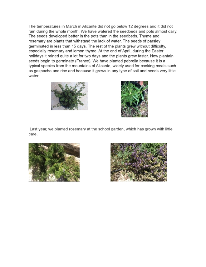 plants_page-0002